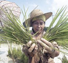En marcha por otro modelo agrario